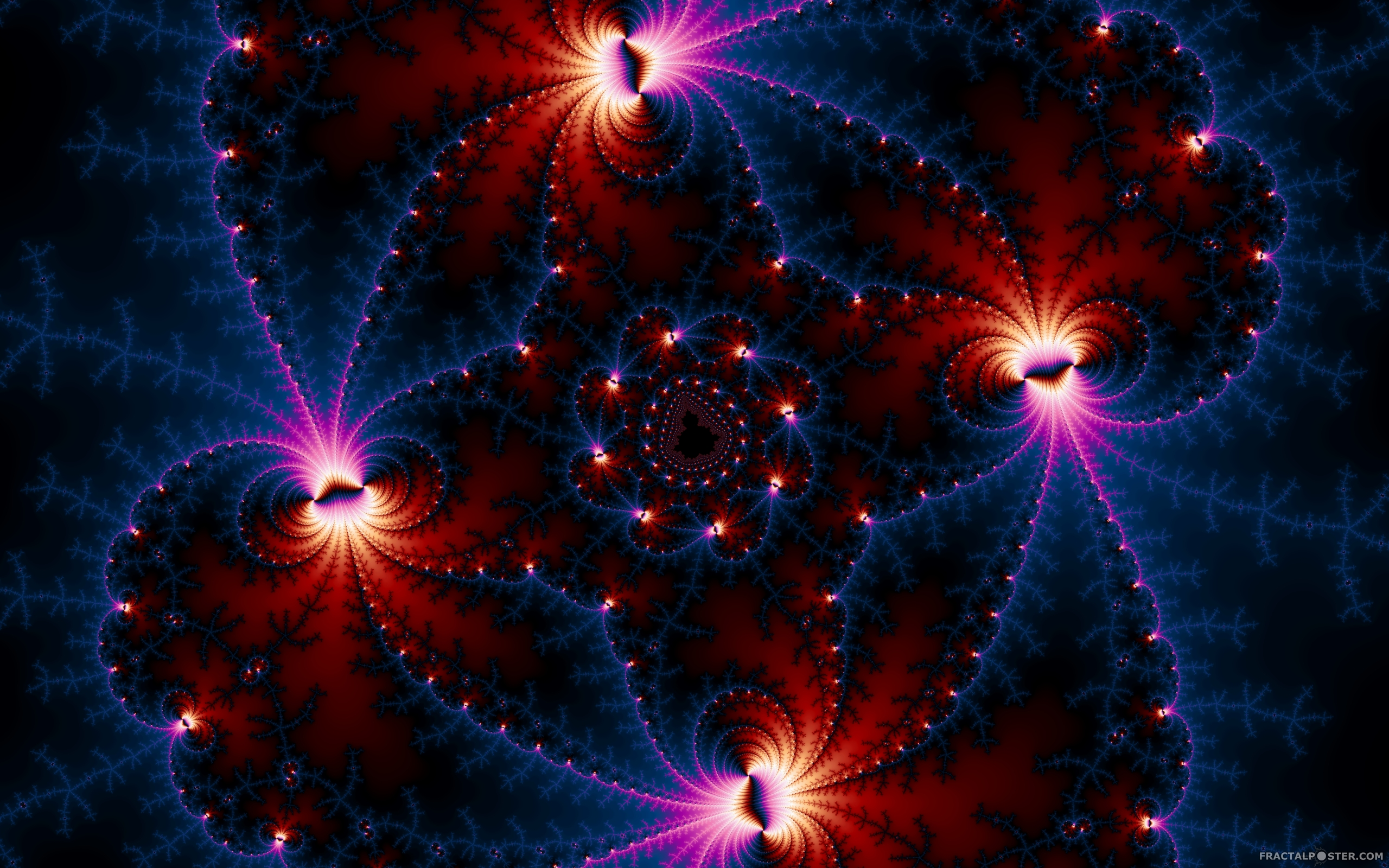The gallery for --> Fractals In Space  Fractals In Space
