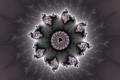 Mandelbrot fractal image .Night flower..