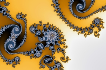 mandelbrot fractal image named black rose