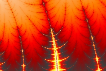 mandelbrot fractal image named burning trees