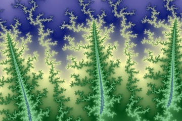 mandelbrot fractal image named Forest