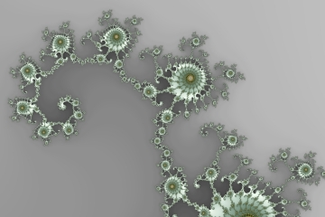 mandelbrot fractal image named grey alien