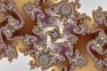 Mandelbrot fractal image lovely dragons