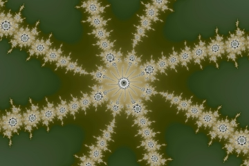 mandelbrot fractal image named needle leaf