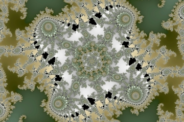 mandelbrot fractal image named noise flowers
