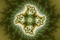 mandelbrot fractal image Vegetable cell