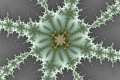 Mandelbrot fractal image winter berry