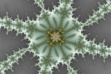 mandelbrot fractal image named winter berry